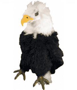 Bald Eagle Driver Animal Headcover 2016